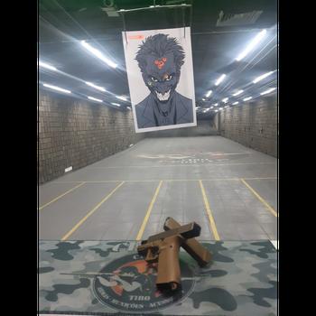 Instrução para atirar em Santa Isabel